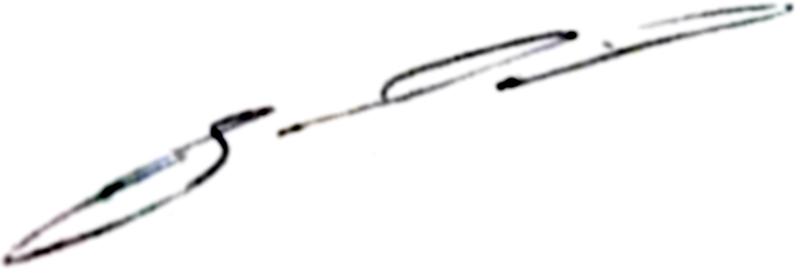 Janne Saarinen, signatur