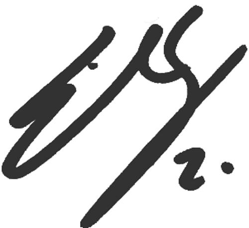 Emil Salomonsson, signatur