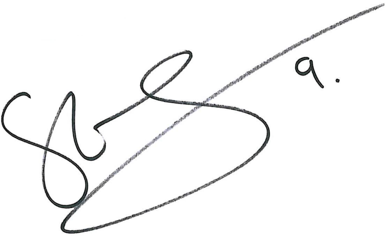 Stefan Selakovic, signatur
